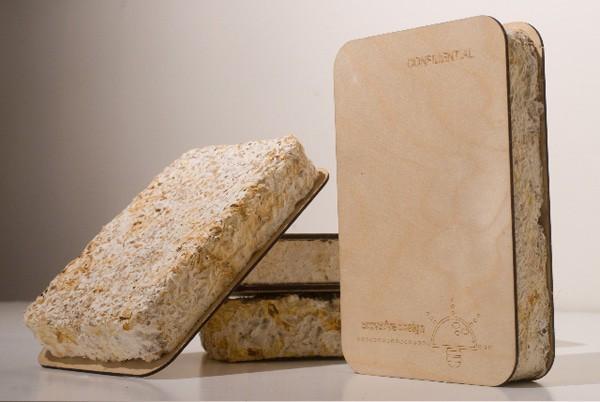 L'emballage polystyrène remplacé par les champignons