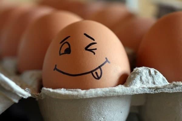 Savez-vous lire la coquille d'œufs ? Petit guide pour vous aider.