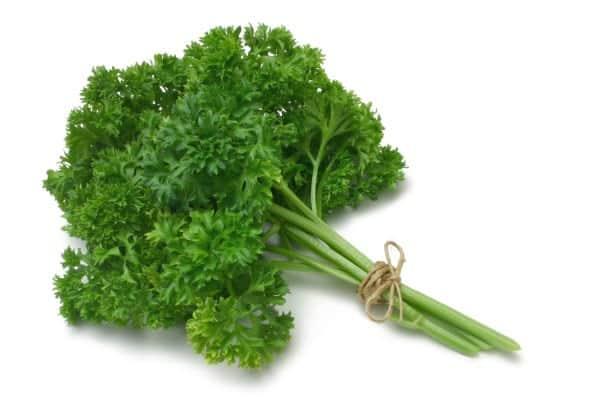 Du plastique végétal et biodégradable à partir de déchets de persil et de cannelle