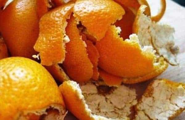 PLIMC, un bioplastique à base de pelures d'oranges